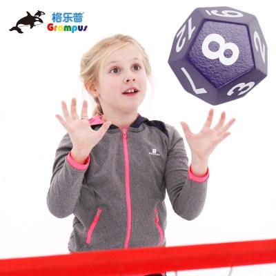 台湾格乐普12面虎鲸骰(紫色)