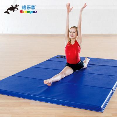 台湾格乐普蓝色四折垫