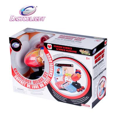 香港 eastcolight/怡高 心脏系统豪华套装学生医学实验儿童科教模型玩具